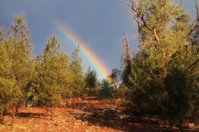 Rainbow over the desert?
