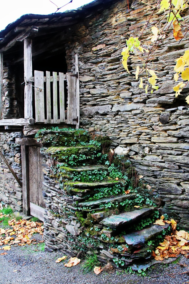 Pretty steps