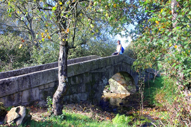 One of many bridges on the Camino