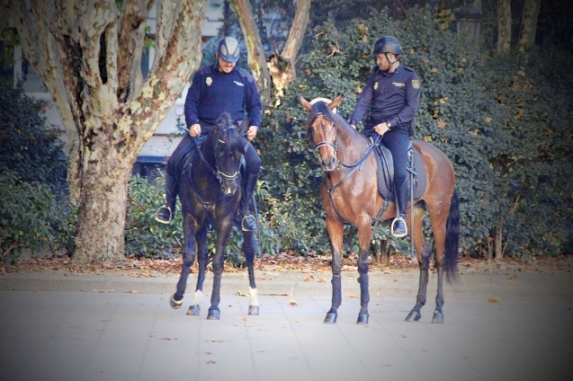 Police on horse back in the park