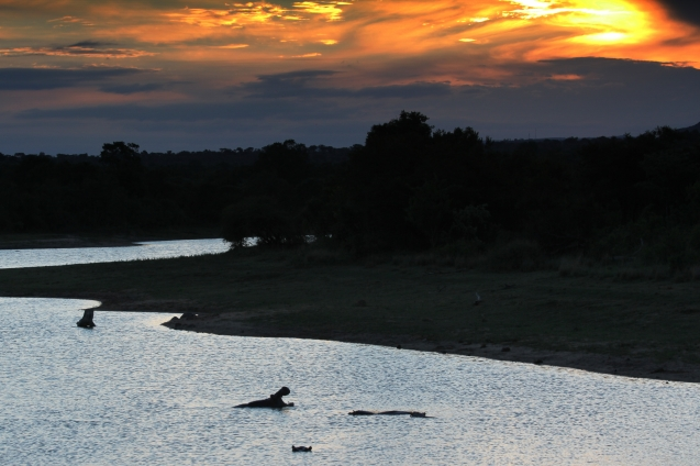 Sunset over the hippos