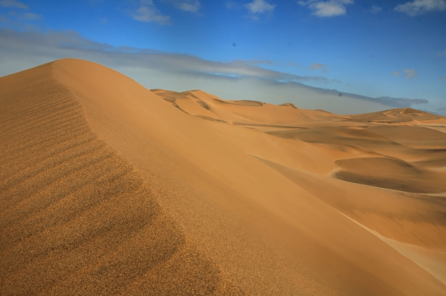 Dunes are beautiful