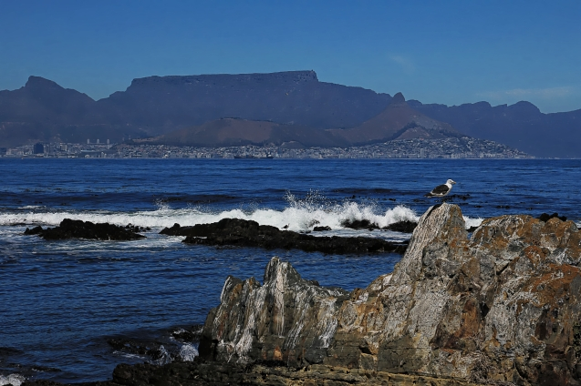 View of Table mountain and Devil's peak from Robben Island