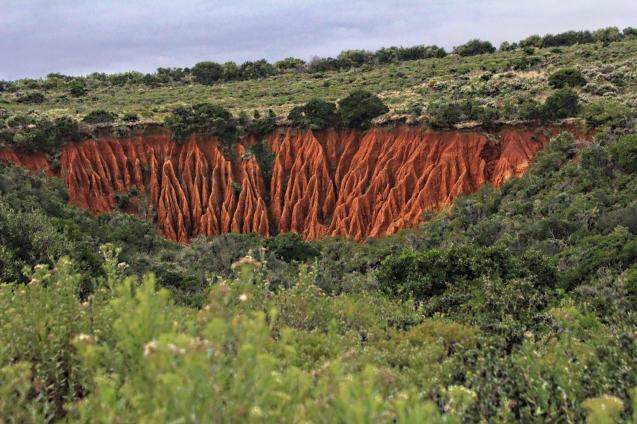Beautiful result of erosion