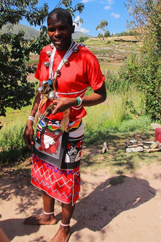 Zulu healer