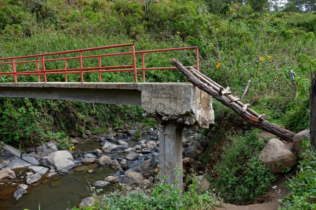 Sketchy bridge with an even sketchier ladder.