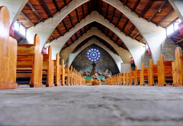 Even dogs get to go to church in Sagada