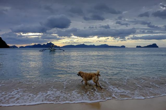 Los Cabanos beach
