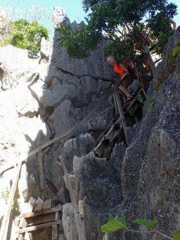 Steps going down to Barracuda Lake on Coron Island