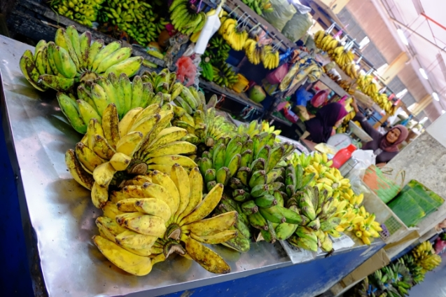 That's a lot of different kinds of bananas!