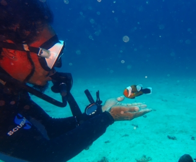 Nemo likes Jun-jun