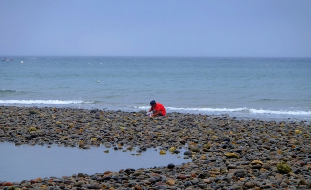 Shell hunting