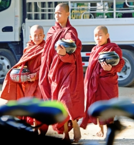 Young monks gathering morning donations