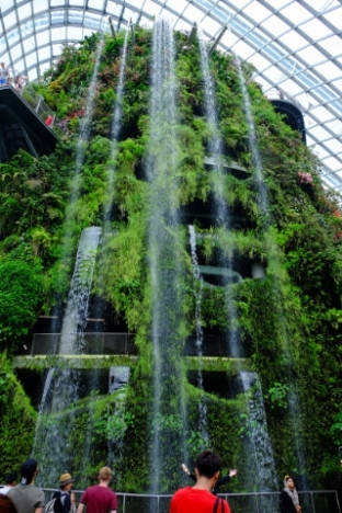 Waterfall in the cloud forest dome.