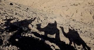Shadows in Negev desert